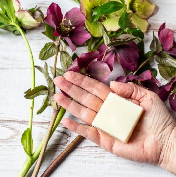 Lotion bar in palm of hand above flowers