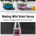 Wild violet syrup blue and lavendar