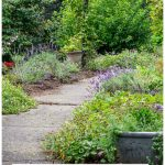 Front walkway path