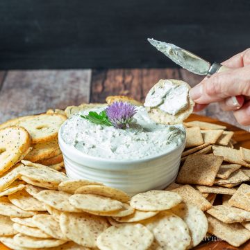 Blue cheese spread with crackers on a tray.