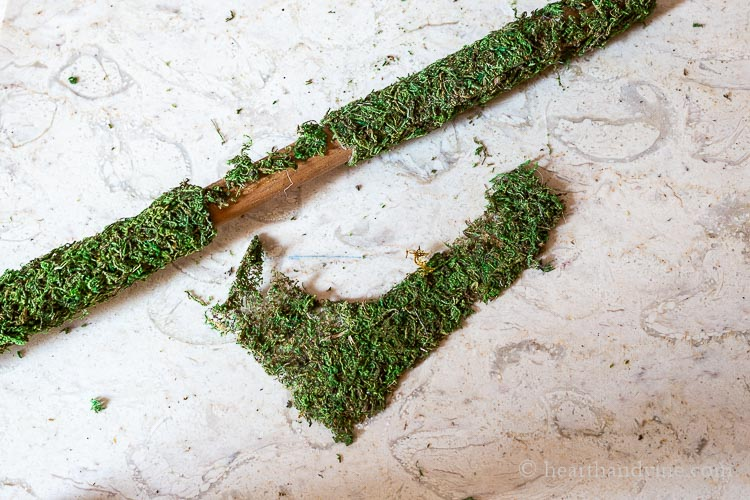 Broom stick covered in moss with a small area uncovered and a piece of moss next to it.