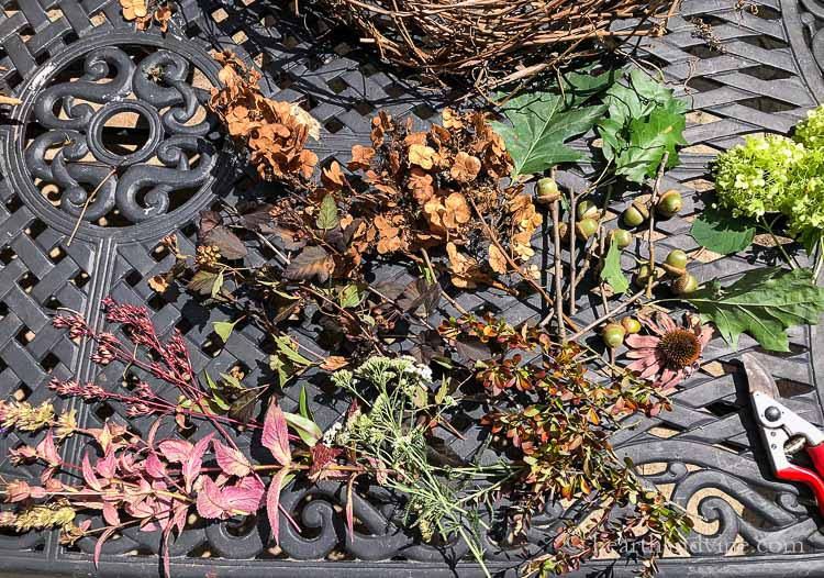 Dried flowers, acorns, leaves and seed pods on a table.