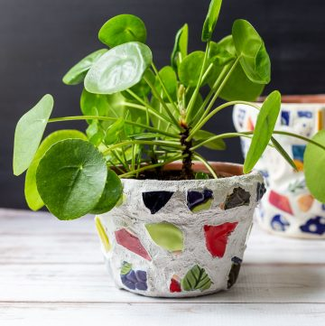 Mosaic pot with pilea plant inside.