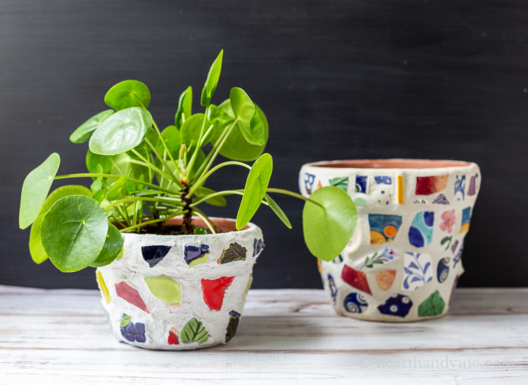 Two mosaic pots. One with a pilea plant inside.