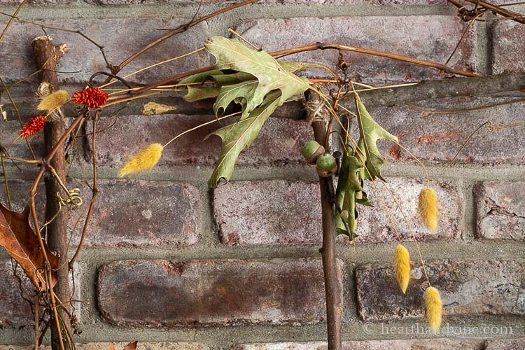 Close up of branch window with acorns, dried grasses and grapevines.