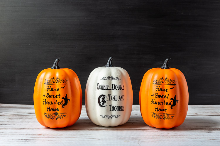 Three pumpkins from the dollar store. Two orange and one white with Halloween sayings in black on the fronts.