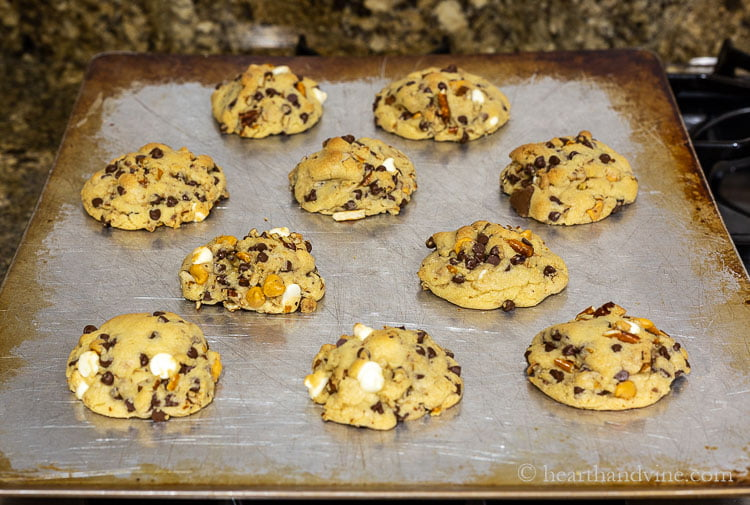 Cookies fresh from the oven on a cookie sheet.