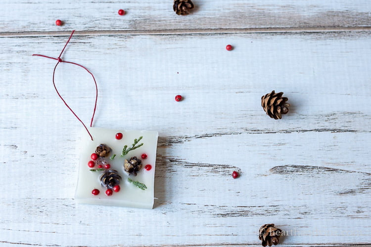 Wax scented Christmas ornament with a red twine hanger on a table with berries and min pinecones.