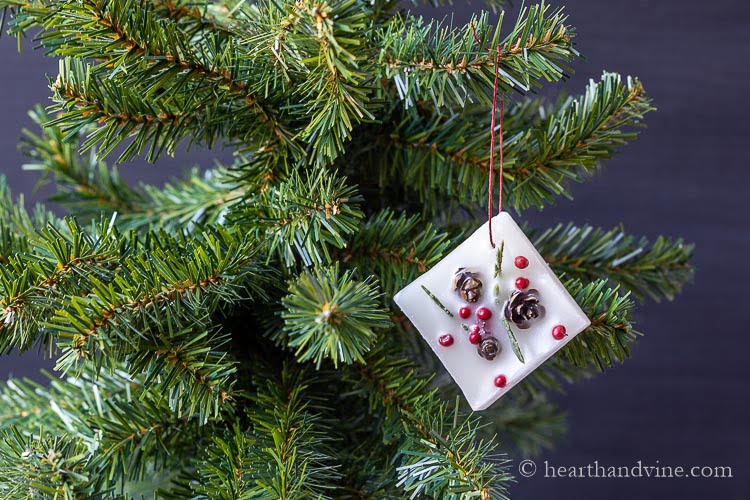 Winter botanical wax square with a red wax twine hanger on an artificial Christmas tree.