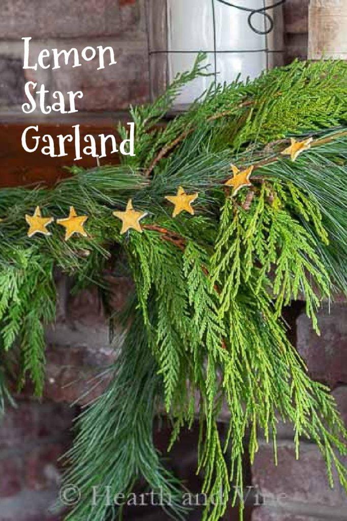 Cut out lemon stars make a garland on top of fresh cedar.