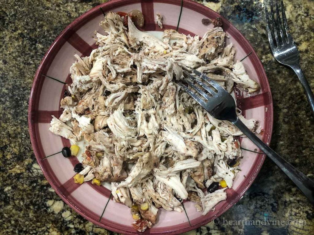 Cooked shredded chicken in a bowl with two forks.