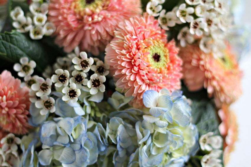 Flower arrangement with blue hydrangeas, peach button mum and small white clusters.