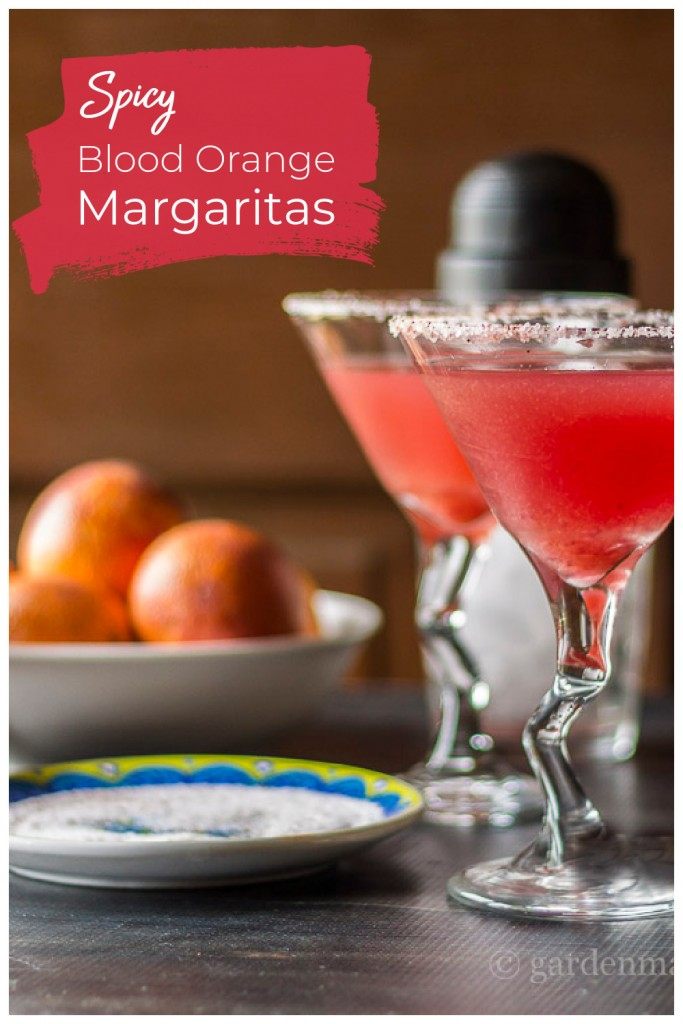 Two blood orange margaritas next to a bowl of blood oranges and a plate of rimming salt.