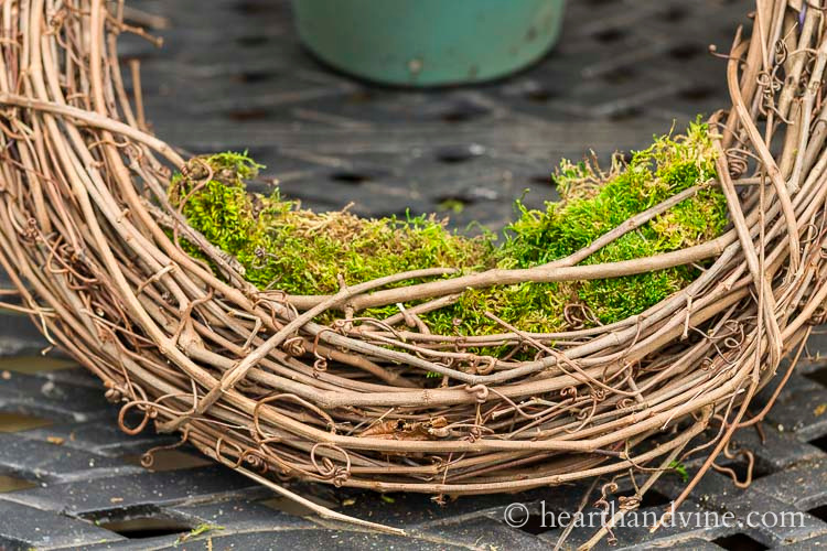 Grapevine wreath with soil and moss on the bottom.