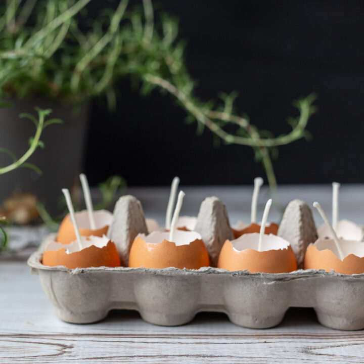 Eggshell candles in cardboard container.