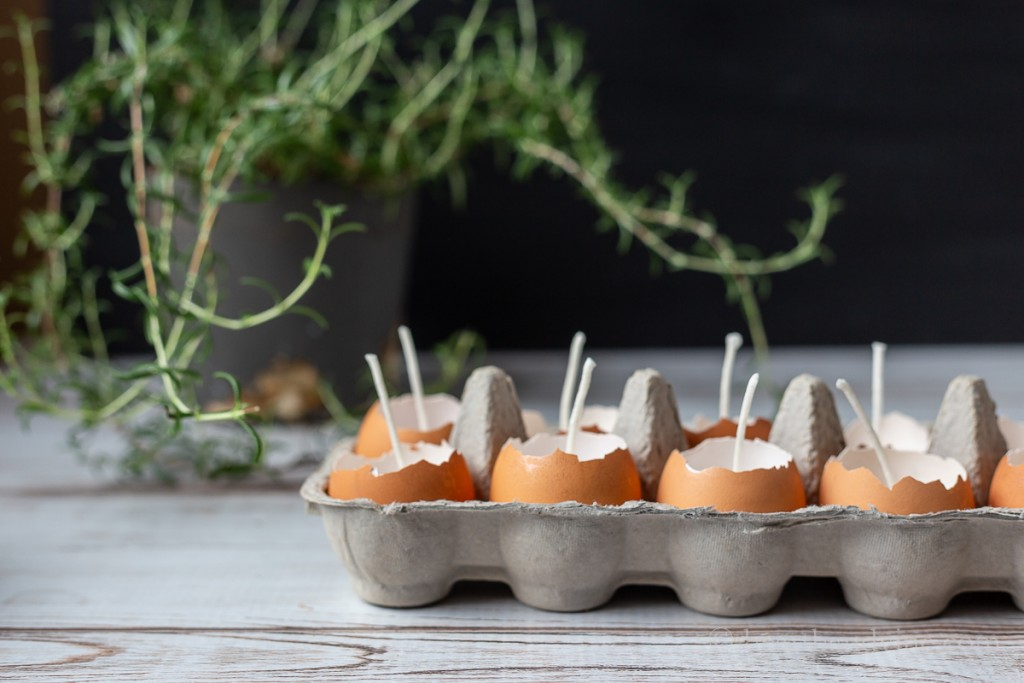 Side view of 6 brown eggshell candles in a cardboard egg carton and a rosemary plant.