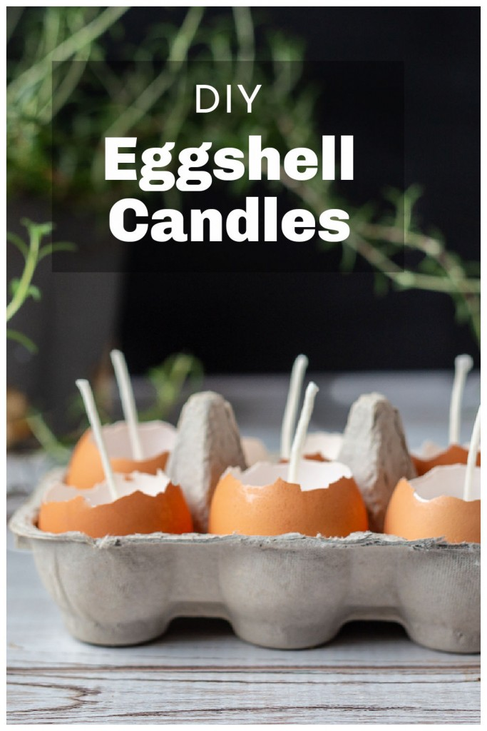 Side view of 6 brown eggshell candles in a cardboard egg carton and a rosemary plant in the background.