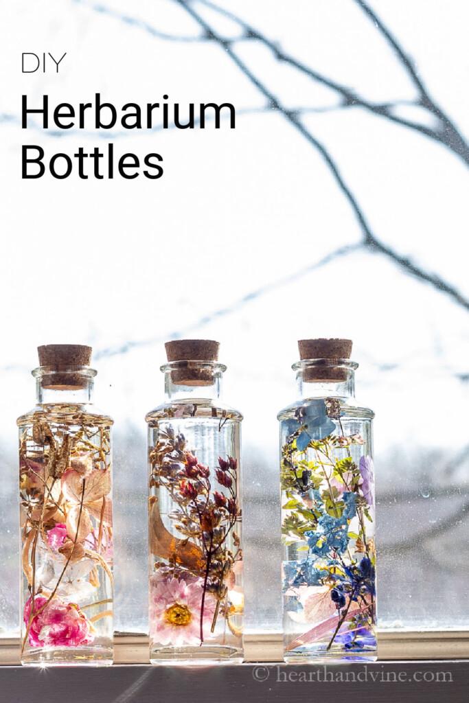 Three dried flowers in oil bottles on a windowsill.