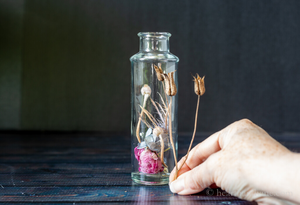 Glass bottle with a few dried flowers inside. A hand with another dried flower is measured against the outside of the bottle for height.
