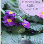Basket of primroses with text overlay Mother's Day Gifts under $50
