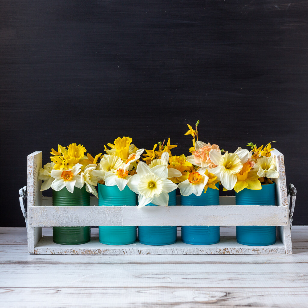 Tin can upcycle caddy with daffodils.