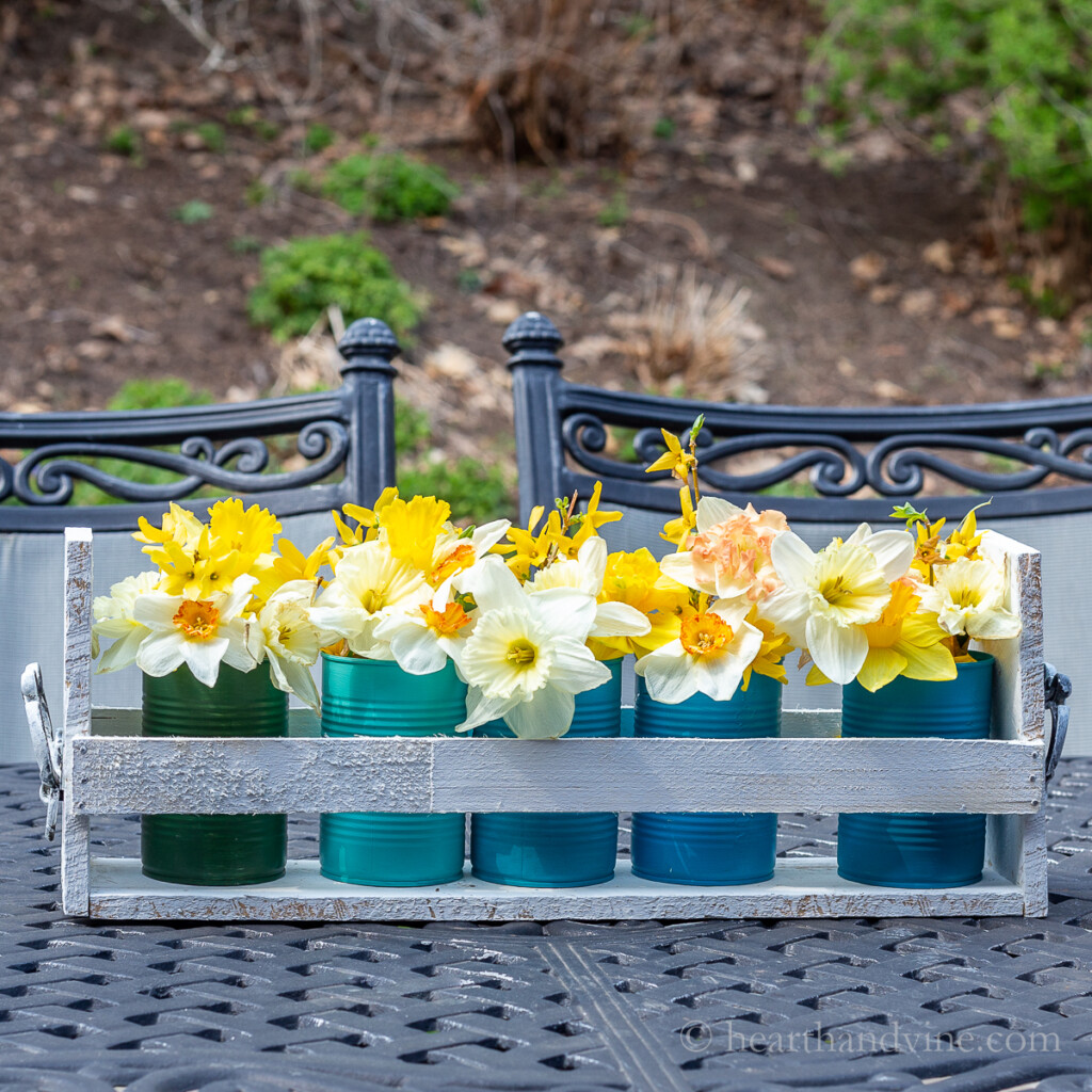 Daffodils in five colored tin cans in a pallet wood caddy