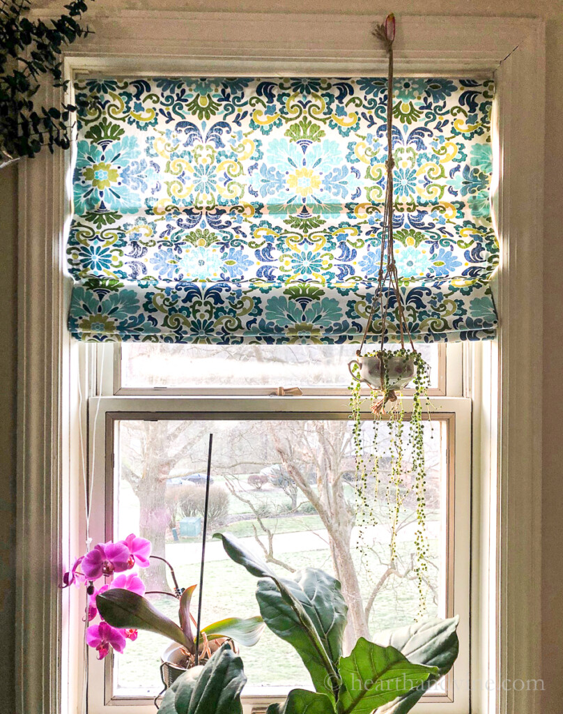 Roman shade with a mini blind hanging in the window with a string of pearls plant.