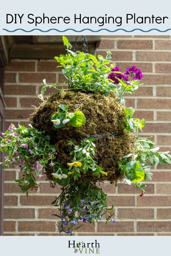 Hanging globe planter with moss and flowers