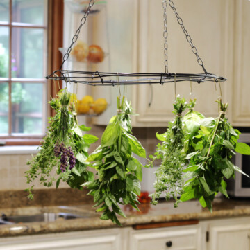 Fresh herbs in bundles hanging from a wire rack in the kitchen