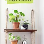 diy rope shelf with plants