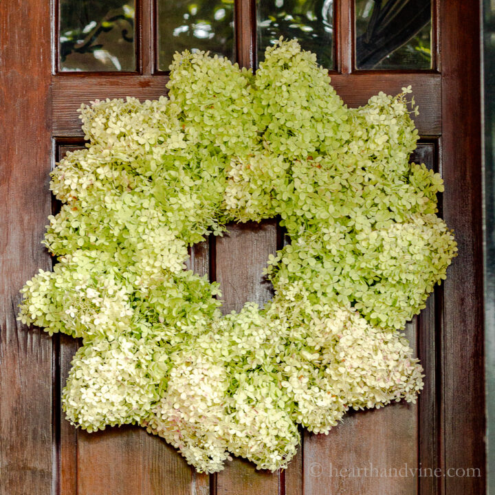 Coroa de hortênsias frescas da ribalta em uma porta.
