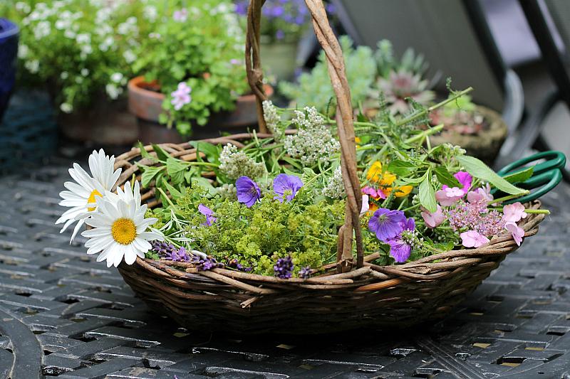 Basket of fresh picked garden flowers