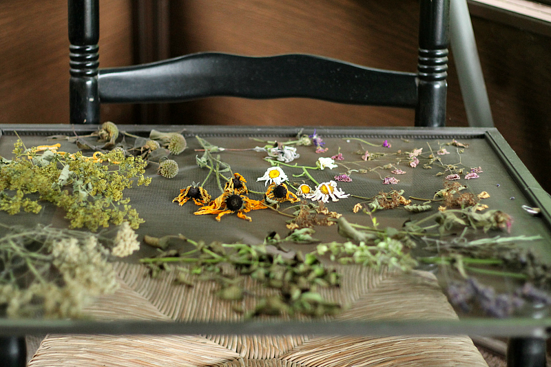 Dried flowers on a  window screen on chair arms.