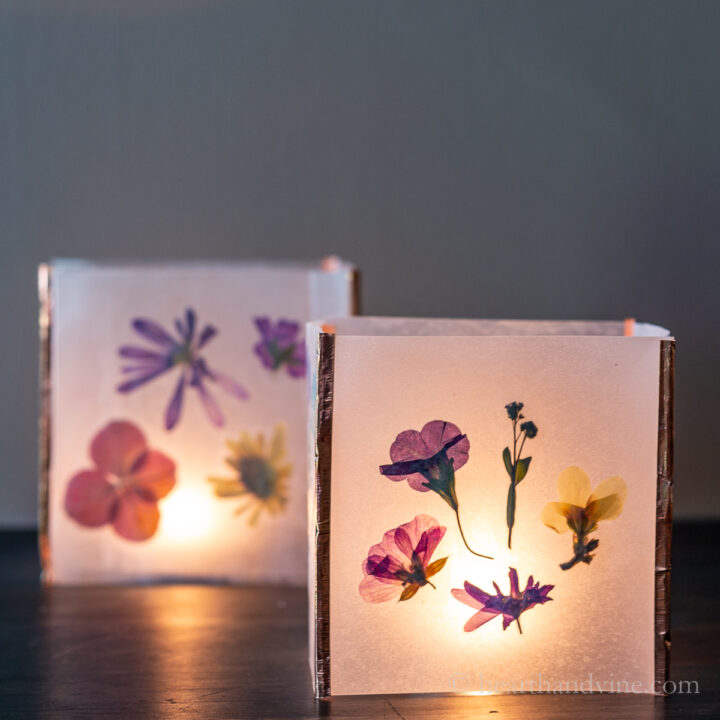 Two pressed flower luminaria