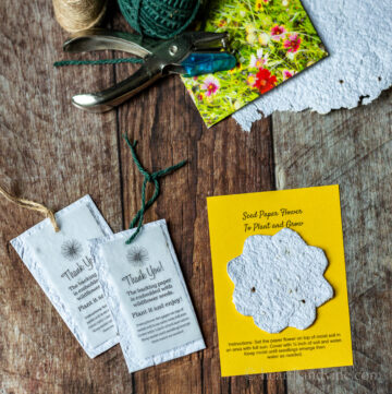 Seed paper tags, cards and twine, a paper punch and packet of seeds.