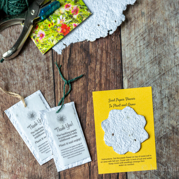 Seed paper tags and cards