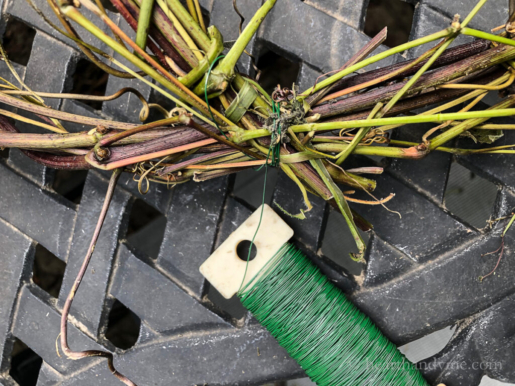 Wire floral paddle used to attached grapevines together.