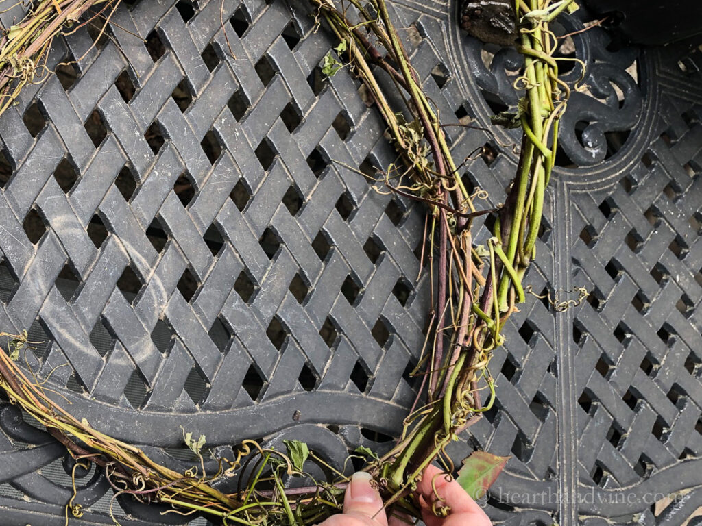 Attaching grapevine rope to wreath.