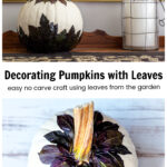 White pumpkin decorated with dark leaves on a buffet above the top down view of the same pumpkin with leaves rimmed around the stem.