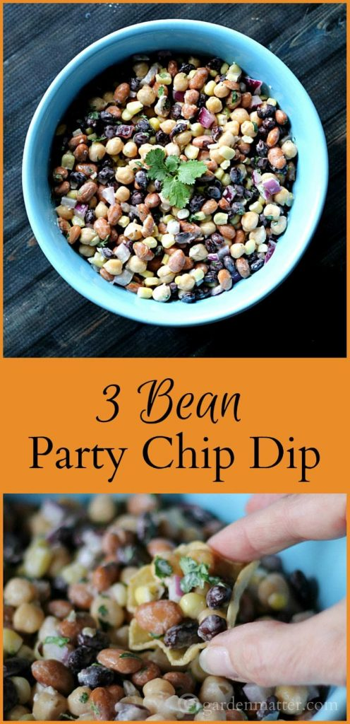 This recipe for 3 bean party dip is great any time of year. Whether you are watching the superbowl, a girls night out. or even a family picnic.