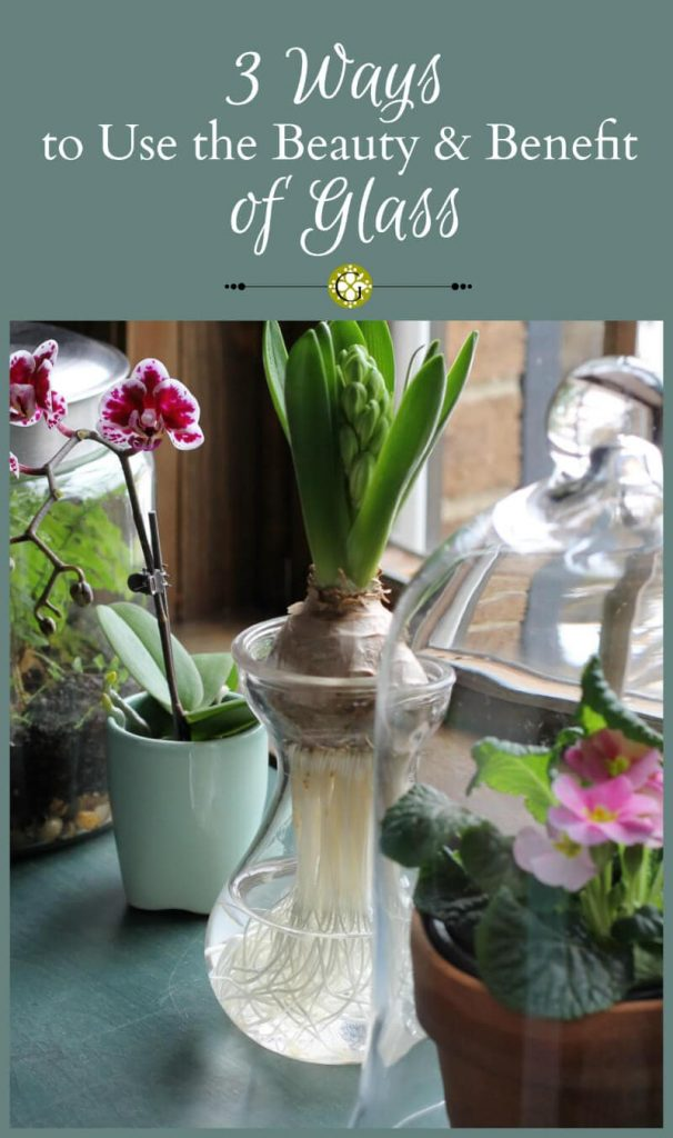 Learn 3 great ways to use the beauty and benefits of glass for your indoor gardening and home decorating needs.
