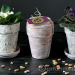 3 Ways to Age Terracotta Pots
