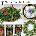 Learn about the many ways to use herbs from your garden from cooking to decor to beauty.
