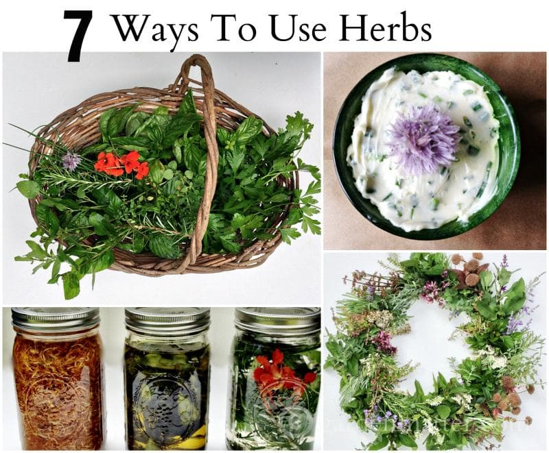 Learn how to use herbs from your garden from cooking to decor to beauty.