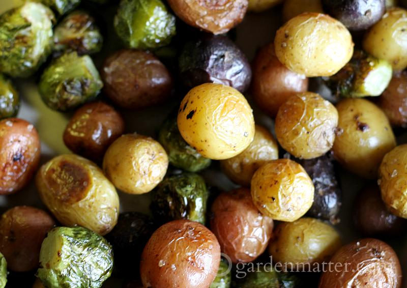 After Roasting - Roasted Brusell Sprouts and Baby Potatoes - gardenmatter.com