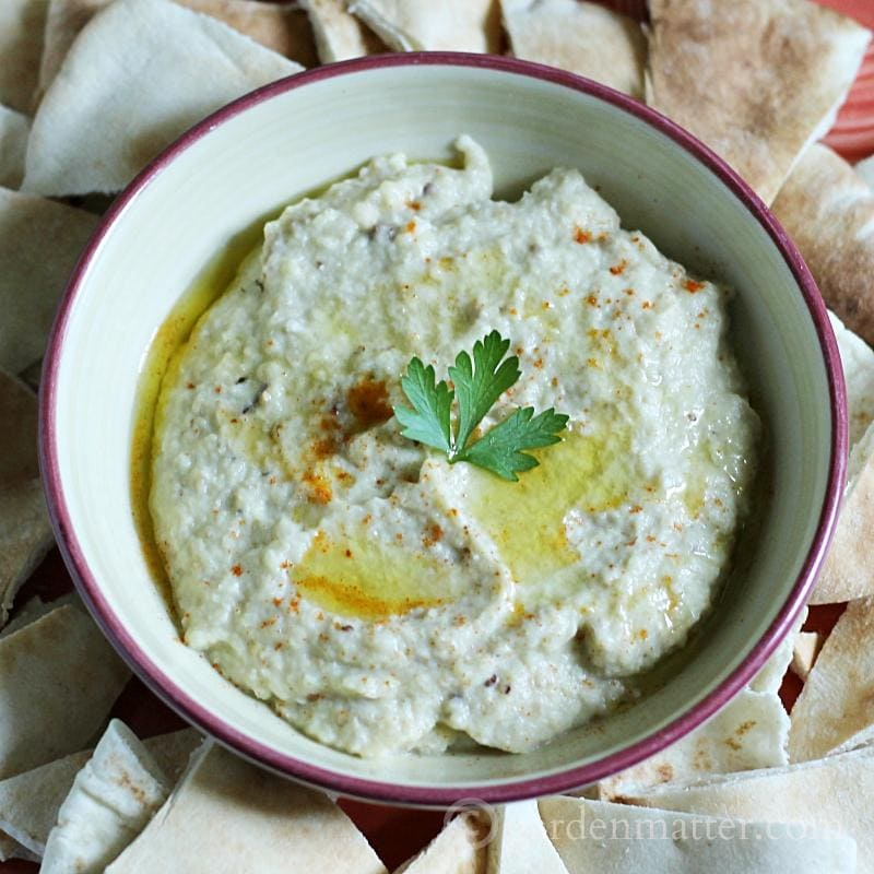 Baba Ganoush Dip - 10 Appetizers