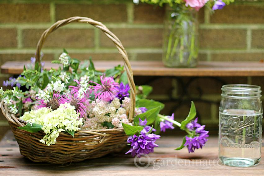 Cut flowers ~ 10 gardening tips ~ gardenmatter.com