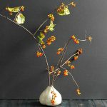 If you like to decorate with nature you may be interested to learn about bittersweet vine, how to find it and use it in your fall decor.