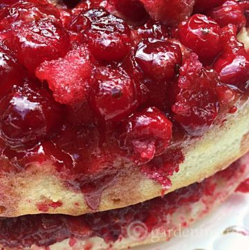 Learn how to make an easy double layered cranberry upside down cake that will look and taste great during this holiday season.