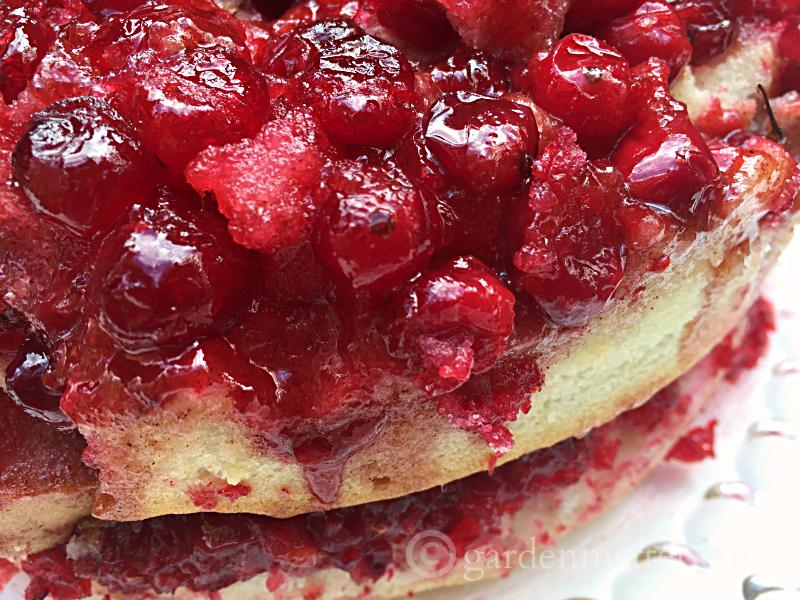 Layered Cranberry Upside Down Cake
